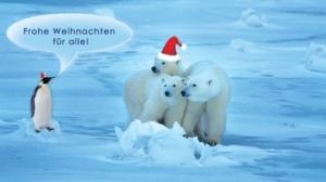Weihnachtskarten drucken my blog - Seelenfarben weihnachtskarten ...